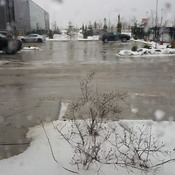Freezing Rain in Edmonton