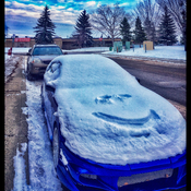 At least the CAR is smiling !