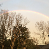 Rainbow from back deck