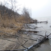 Glendale Beach , Lambton Shores ON