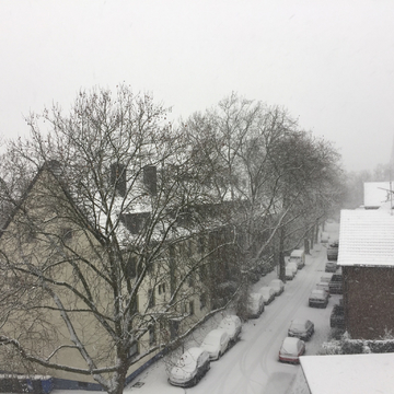 Snow near Dusseldorf