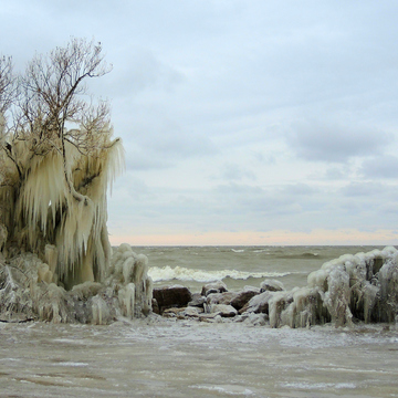 Point Pelee Ontario Canada ice sculptures.Natures ice sculptures.
