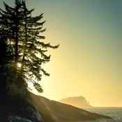 Fall Tofino Sunset