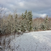 First Abundant Snow In Southeast Cape Breton