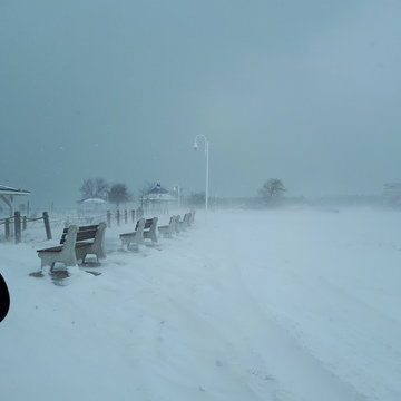 Port Elgin Squalls