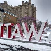 Ottawa's first wintery day