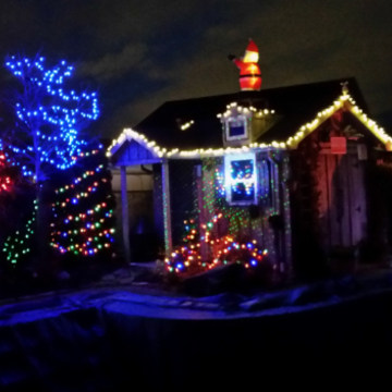 Backyard Christmas lighting