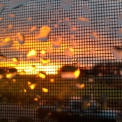 rainy sunsetmeadowbank