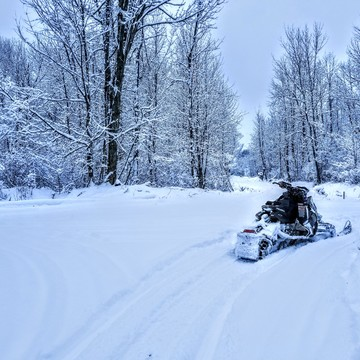 beauty day sledding!