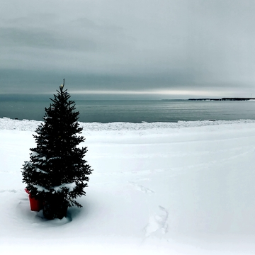 Panorama picture, Port Dover Beach, maybe more snow on the way
