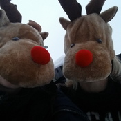 just reindeering around!