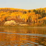 Fall on the mighty peace river