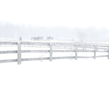 Winter at SJD Equestrian