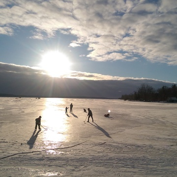 Shinny on the Bay