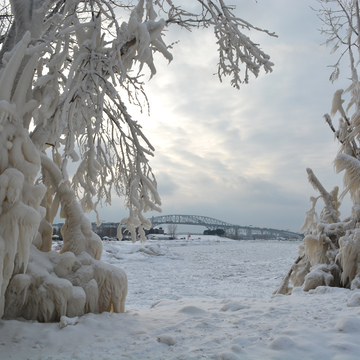 Nature's fury makes Ice Sculptures