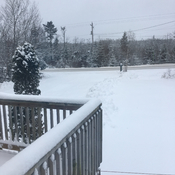 "Wednesday January 17th 2018 ""snow day"""