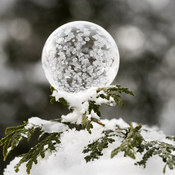 good weather for frozen soap bubbles