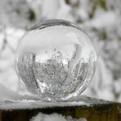 Winter Wonderland through a Glass Ball
