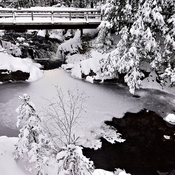 Bridge Over Winter Brook
