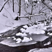 Stoney Brook In Winter