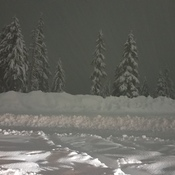 snow fall at night