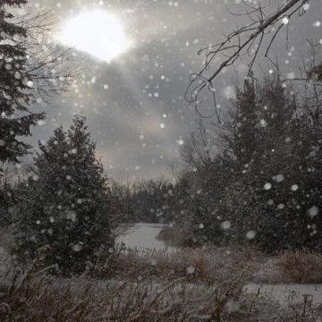 Sun flurries