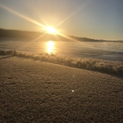 Frosty Morning at Serenity Cove
