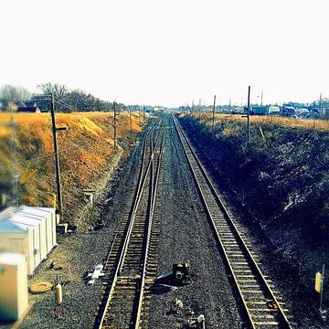 Windsor Rails