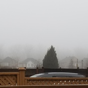 DEVELOPING FOG