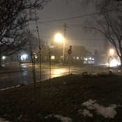 Foggy Evening