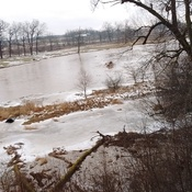 Conestogo River after January thaw/rain