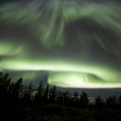 Aurora Curtain