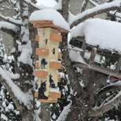 Snowing too much even for the birds.