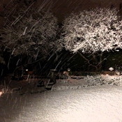 SNOW - WEST VANCOUVER - 12:17 AM