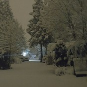 Nanaimo BC 5am 7 inches of snow