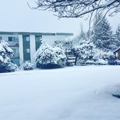 snow in Parksville