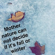 Is it fall or winter