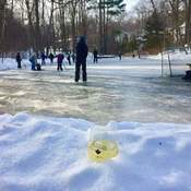 Family Day on the pond.