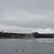 ICe coming off Lake Banook.