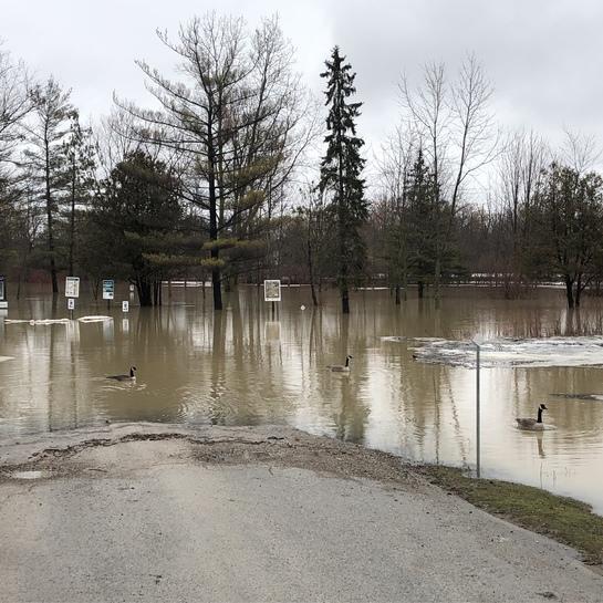 Strathroy conservation area under water! Strathroy, Ontario, CA