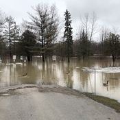 Strathroy conservation area under water!
