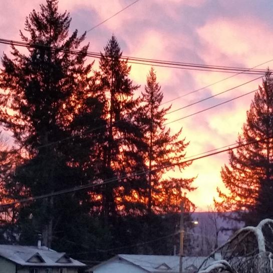 Dawn in Duncan Duncan, BC