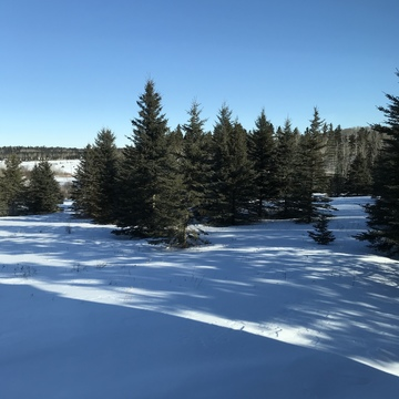 Magnificent Manitoba