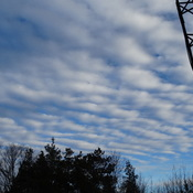 I think Altocumulus clouds, very nice