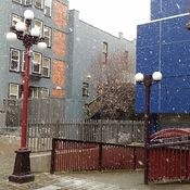 snowing in downtown Victoria BC