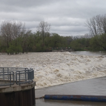 High water in Brantford