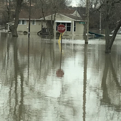 Flooding in Cayuga Ontario