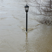London Ontario February 21st flood waters of the Thames