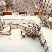 Our snowy Abbotsford backyard.