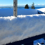 SNOW COUNT - WEST VANCOUVER - 8:38 AM